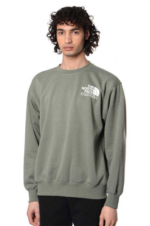THE NORTH FACE Coordinates Agave Green Sweatshirt 0